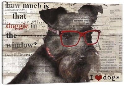 Doggie In Window Canvas Print #CRO41