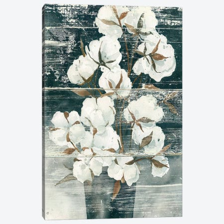 Country Cotton Canvas Print #CRO424} by Carol Robinson Canvas Wall Art