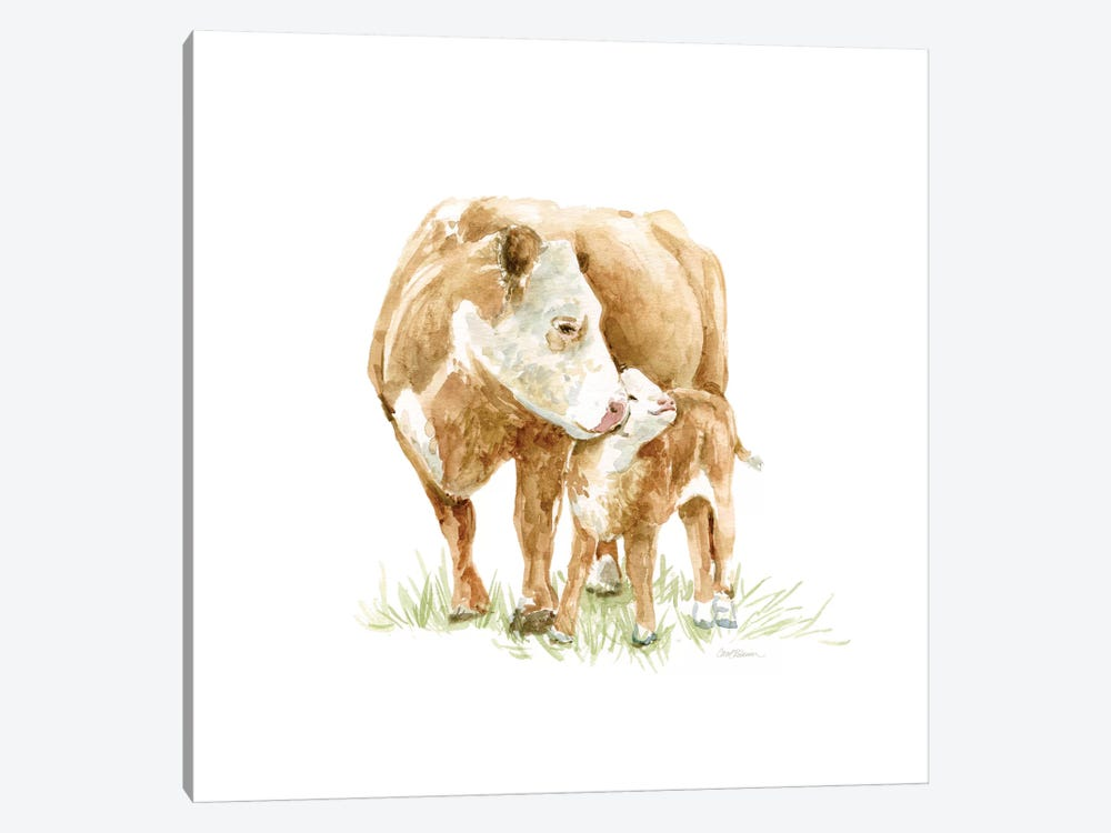 Cow And Calf by Carol Robinson 1-piece Canvas Print
