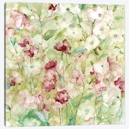 Garden Variety Canvas Print #CRO436} by Carol Robinson Art Print