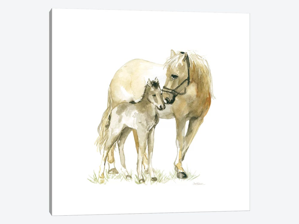 Horse And Colt by Carol Robinson 1-piece Canvas Art
