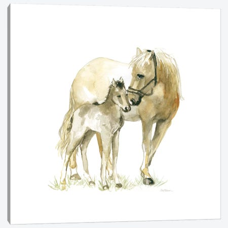 Horse And Colt Canvas Print #CRO439} by Carol Robinson Canvas Artwork
