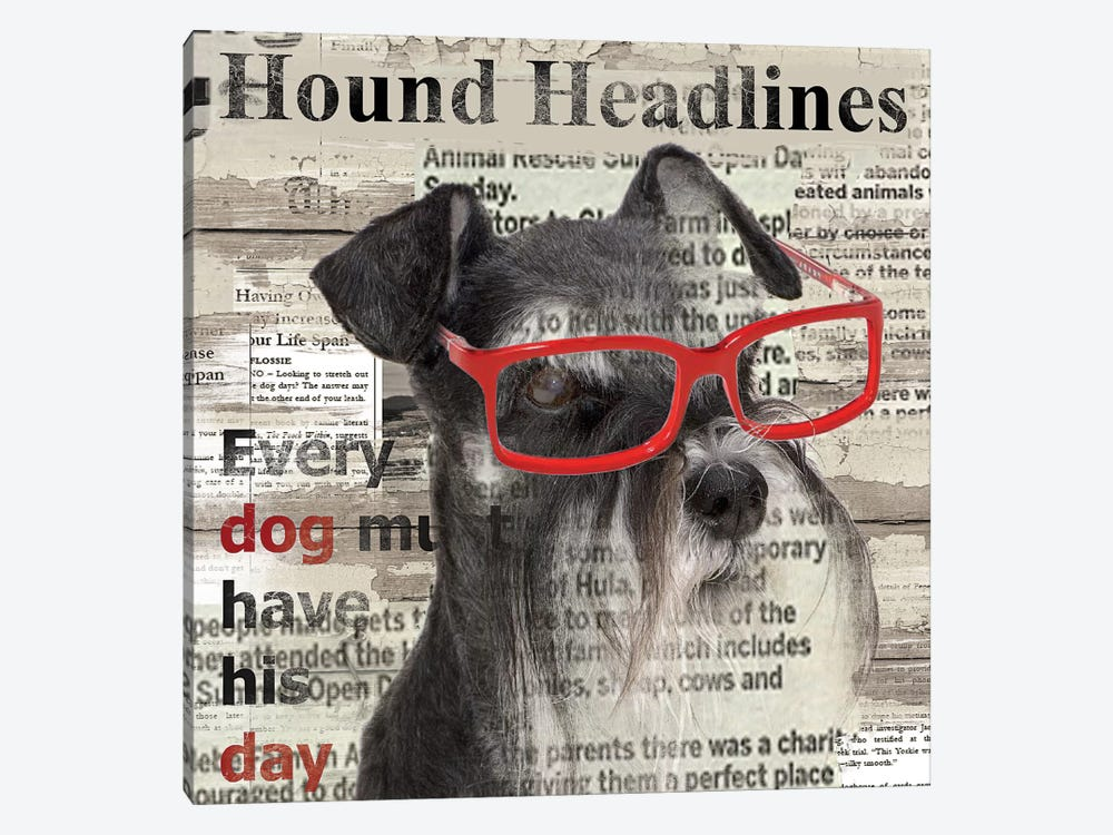 Hound Headline by Carol Robinson 1-piece Canvas Wall Art