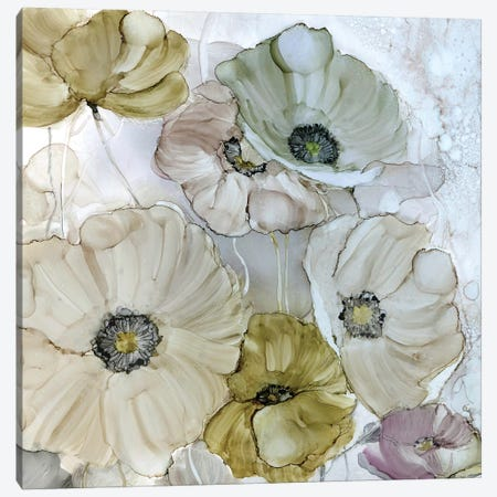 Iridescent Poppies Canvas Print #CRO441} by Carol Robinson Canvas Art Print