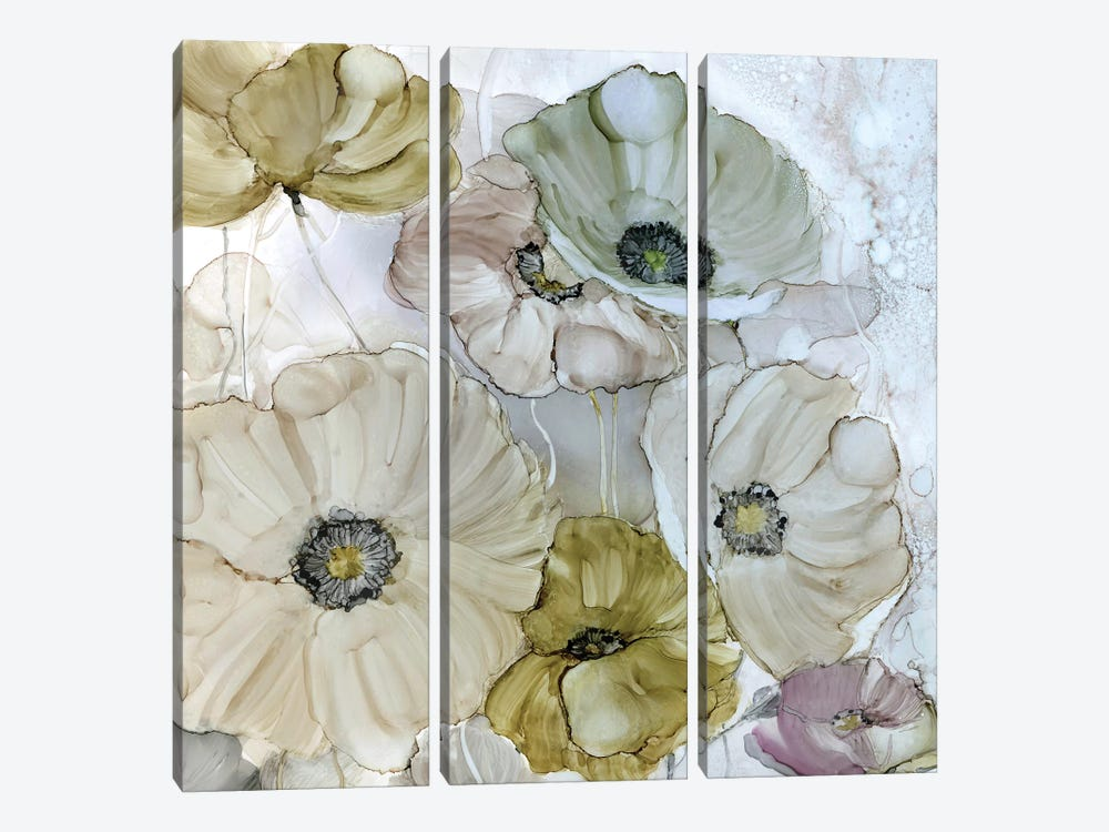 Iridescent Poppies by Carol Robinson 3-piece Canvas Print