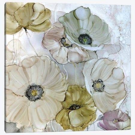 Iridescent Poppies Canvas Print #CRO441} by Carol Robinson Canvas Art Print