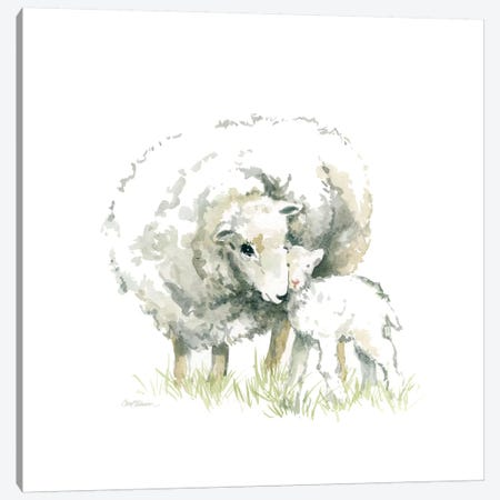 Sheep And Lamb Canvas Print #CRO448} by Carol Robinson Art Print