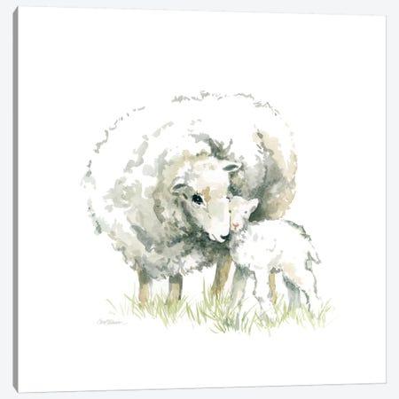 Sheep And Lamb Canvas Print #CRO448} by Carol Robinson Art Print