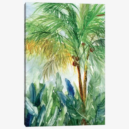Vintage Palm I Canvas Print #CRO450} by Carol Robinson Canvas Artwork
