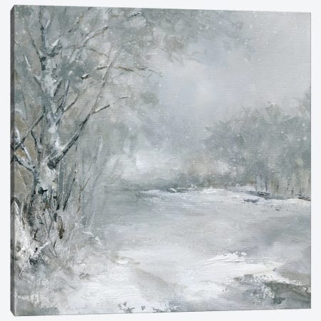 Winter Wonderland Canvas Print #CRO451} by Carol Robinson Canvas Art