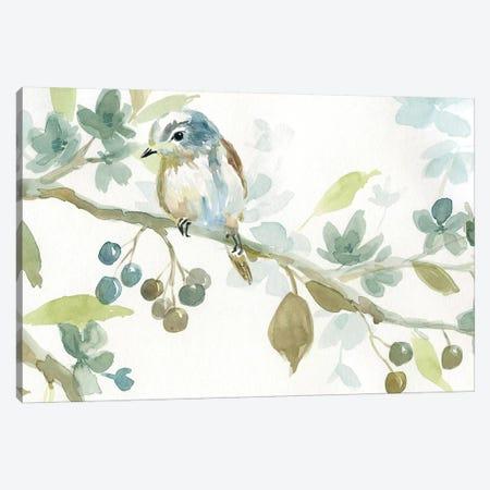 Beginning Of Spring II Canvas Print #CRO454} by Carol Robinson Canvas Art Print