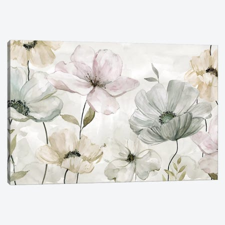 Garden Grays Canvas Print #CRO466} by Carol Robinson Canvas Wall Art