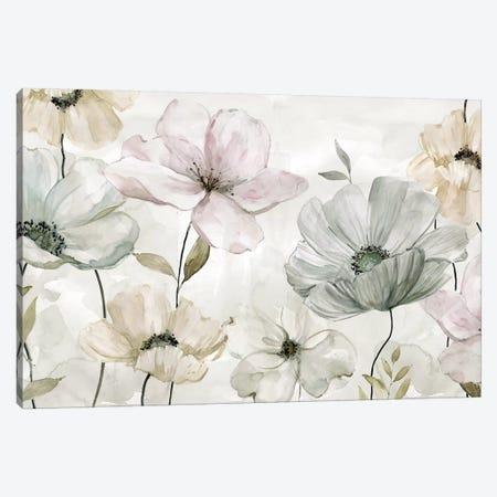 Garden Grays Canvas Print #CRO466} by Carol Robinson Canvas Wall Art