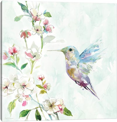 Hummingbird II Canvas Art Print