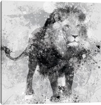 Lion Canvas Print #CRO46