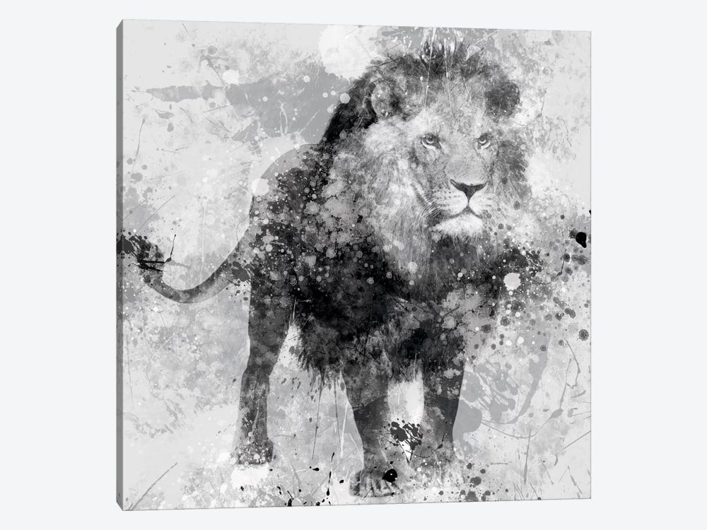 Lion by Carol Robinson 1-piece Canvas Print