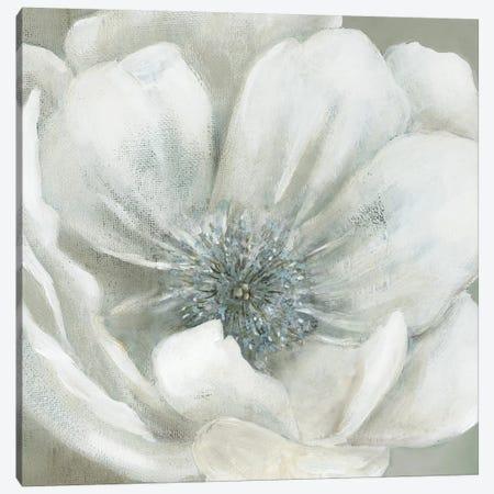 Opalescence I Canvas Print #CRO473} by Carol Robinson Canvas Art