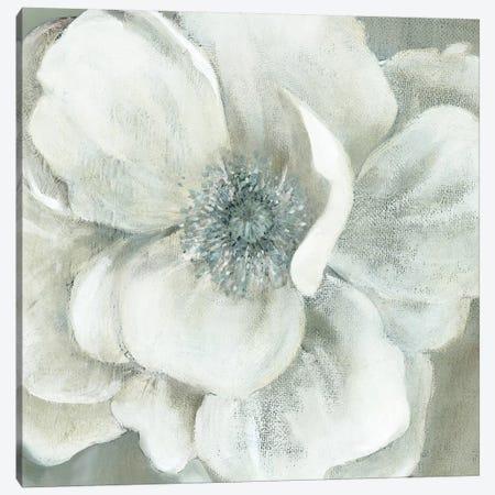 Opalescence II Canvas Print #CRO474} by Carol Robinson Canvas Print