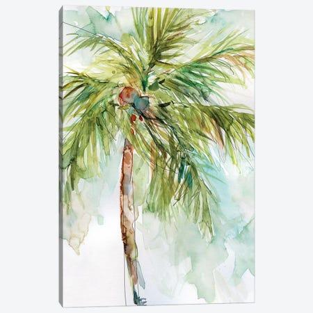 Palm Breezes I Canvas Print #CRO475} by Carol Robinson Art Print