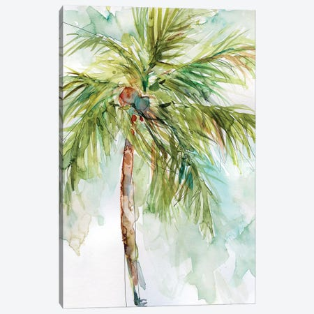 Palm Breezes I Canvas Print #CRO475} by Carol Robinson Art Print