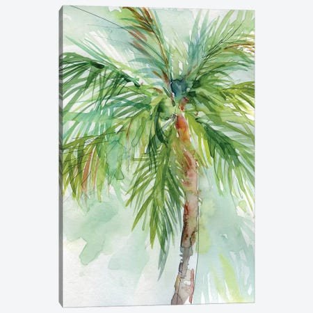 Palm Breezes II Canvas Print #CRO476} by Carol Robinson Canvas Print