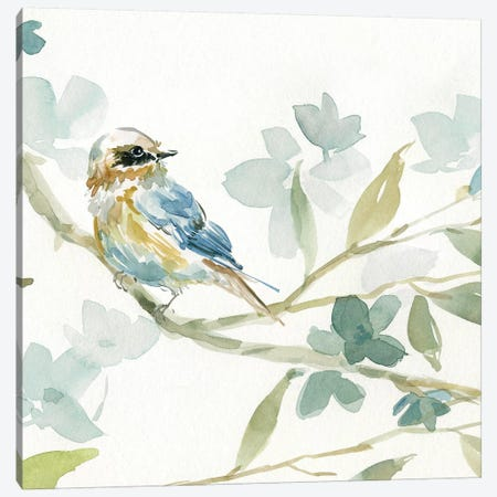 Spring Melody I Canvas Print #CRO478} by Carol Robinson Canvas Art