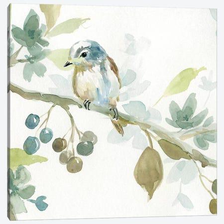 Spring Melody II Canvas Print #CRO479} by Carol Robinson Canvas Wall Art
