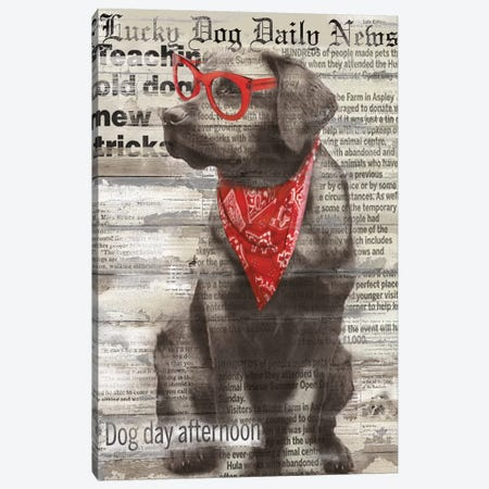 Lucky Dog Canvas Print #CRO47} by Carol Robinson Art Print