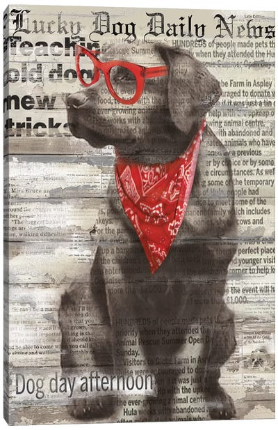 Lucky Dog Canvas Art Print