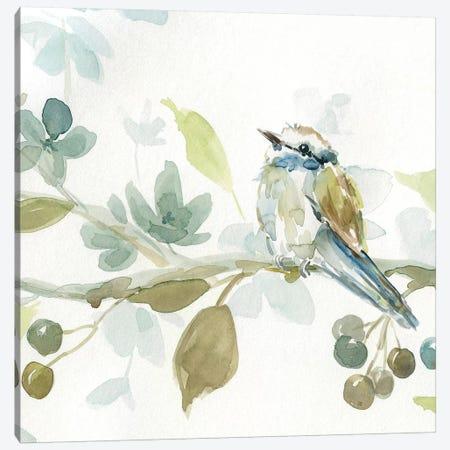 Spring Melody III Canvas Print #CRO480} by Carol Robinson Art Print