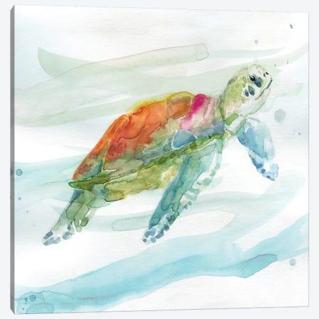 Turtle Tropics I Canvas Print #CRO482} by Carol Robinson Art Print