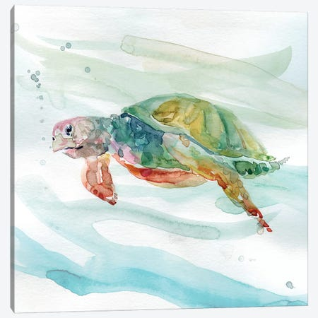Turtle Tropics II Canvas Print #CRO483} by Carol Robinson Canvas Print