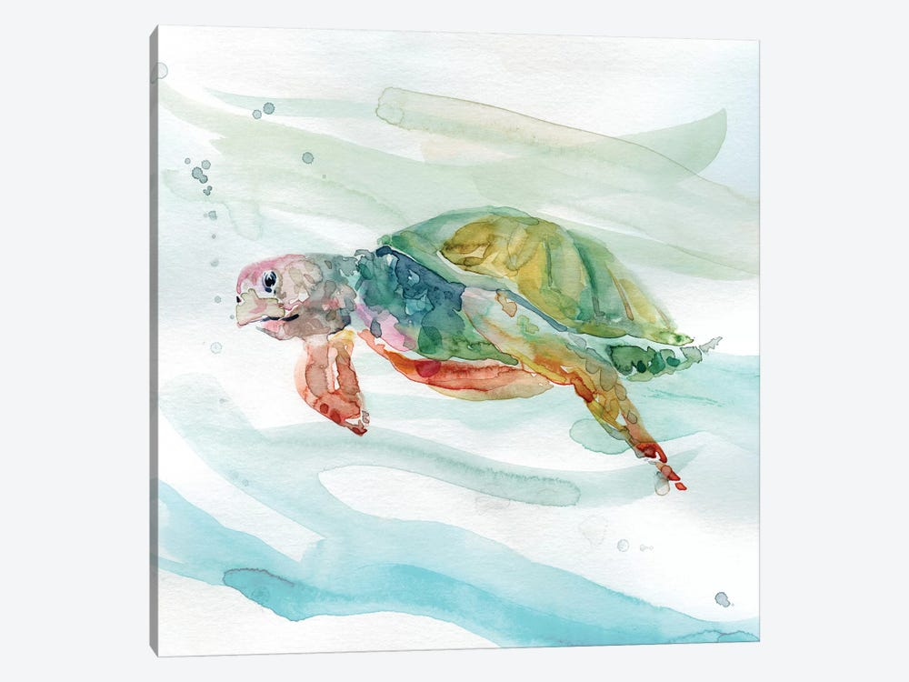 Turtle Tropics II by Carol Robinson 1-piece Canvas Art Print