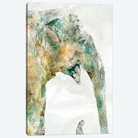 African Colors Elephant Canvas Print #CRO484} by Carol Robinson Canvas Wall Art