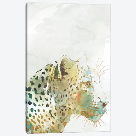 African Colors Leopard Canvas Print #CRO486} by Carol Robinson Canvas Art