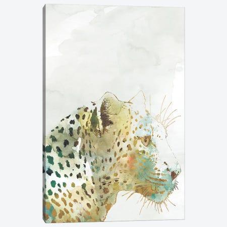 African Colors Leopard Canvas Print #CRO486} by Carol Robinson Canvas Art