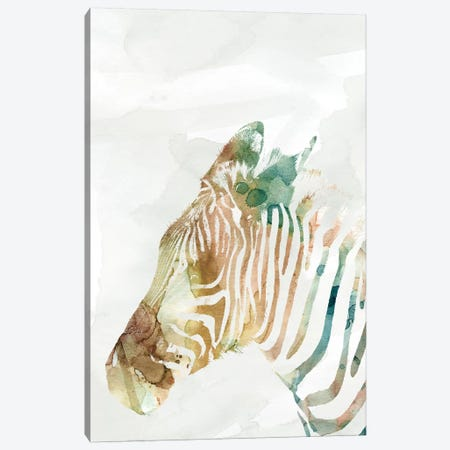 African Colors Zebra Canvas Print #CRO487} by Carol Robinson Canvas Art