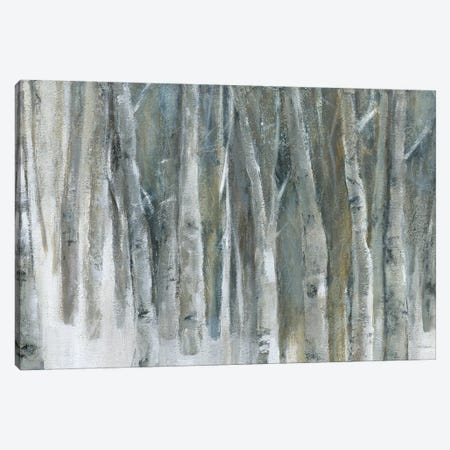 Banff Birch Grove Canvas Print #CRO488} by Carol Robinson Art Print