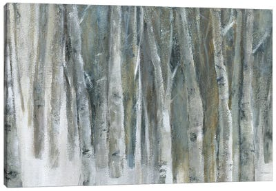 Banff Birch Grove Canvas Art Print