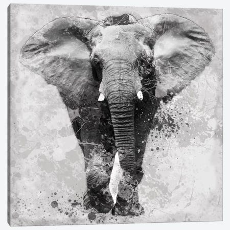 Proud Elephant Canvas Print #CRO48} by Carol Robinson Canvas Artwork