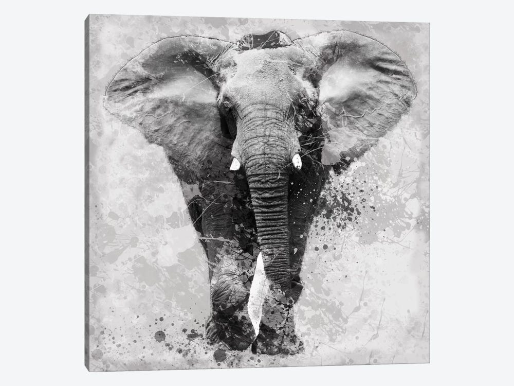 Proud Elephant by Carol Robinson 1-piece Canvas Art Print