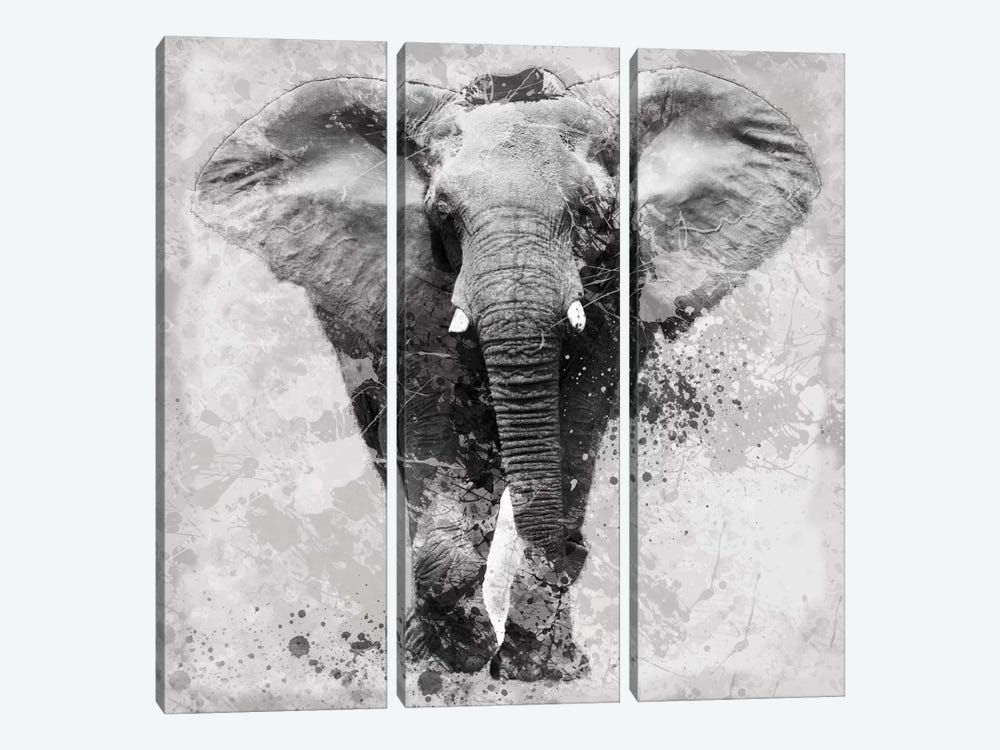 Proud Elephant by Carol Robinson 3-piece Canvas Print