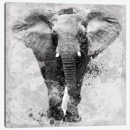 Proud Elephant Canvas Print #CRO48} by Carol Robinson Canvas Artwork
