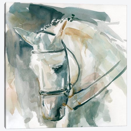 Bound For Home Canvas Print #CRO494} by Carol Robinson Art Print