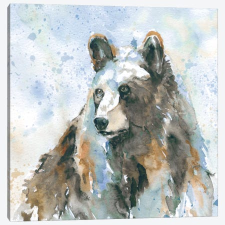 Black Bear On Blue Canvas Print #CRO4} by Carol Robinson Art Print