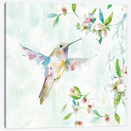 Hummingbird I Canvas Print #CRO522} by Carol Robinson Canvas Wall Art
