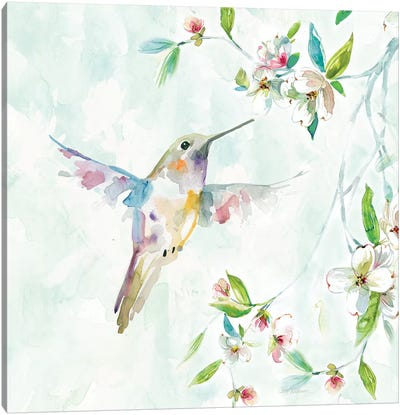 Hummingbird I Canvas Art Print