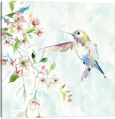 Hummingbird IV Canvas Art Print