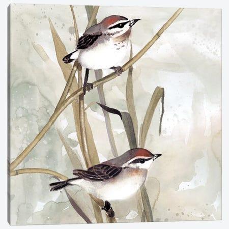 Neutral Spring I Canvas Print #CRO533} by Carol Robinson Canvas Art Print