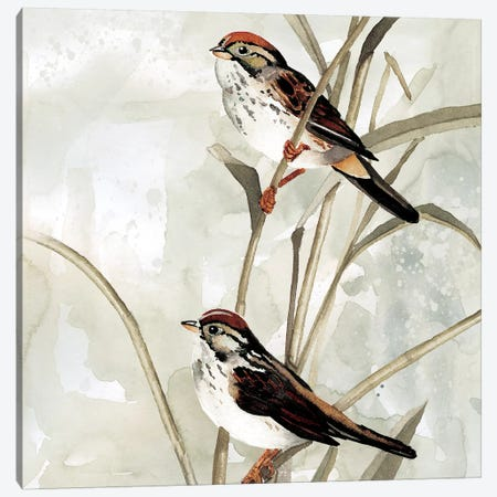 Neutral Spring II Canvas Print #CRO534} by Carol Robinson Canvas Wall Art